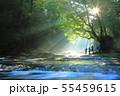 光芒の出る夏の菊池渓谷No.6 55459615
