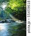 光芒の出る夏の菊池渓谷No.2 55459618