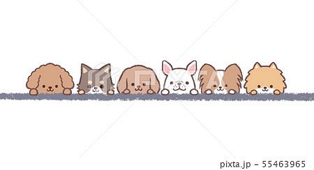 小型犬達ライン 55463965
