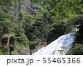 袋田の滝 夏 茨城県大子町 55465366