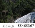 袋田の滝 夏 茨城県大子町 55465367
