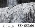袋田の滝 夏 茨城県大子町 55465369