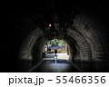 袋田の滝のトンネル 55466356