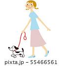 犬の散歩 55466561