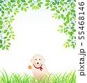新緑の中、一輪の花をくわえる犬 55468146