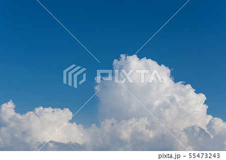 夏雲と青空 55473243