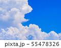 夏の清々しい青空 55478326