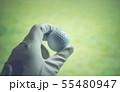 ゴルフボール 55480947