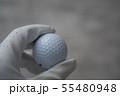 ゴルフボール 55480948