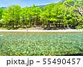 《長野県》初夏の上高地・梓川の清流と新緑 55490457