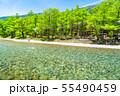 《長野県》初夏の上高地・梓川の清流と新緑 55490459