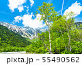 《長野県》新緑の上高地 55490562