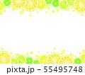 輪切りシトラスのイラスト背景 55495748
