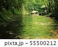 夏の岳切渓谷No.5 55500212