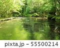 夏の岳切渓谷No.3 55500214