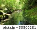 夏の岳切渓谷No.1 55500281