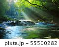 光芒の出る夏の菊池渓谷No.11 55500282