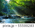 光芒の出る夏の菊池渓谷No.10 55500283