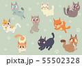 Cute cartoon cats character pack 55502328