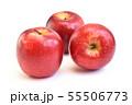 りんご(パシフィッククイーン) 55506773