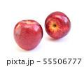 りんご(パシフィッククイーン) 55506777