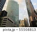 シンガポールのビル群2 55508813