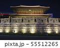 ソウル東大門の夜景 55512265