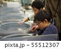 石を削る子供たち 55512307
