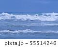 御前崎海岸の波 55514246