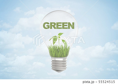 3d rendering of GREEN sign over small green sprout inside a light bulb on blue sky background 55524515