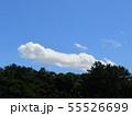 梅雨明けの青い空と白い雲 55526699
