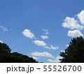 梅雨明けの青い空と白い雲 55526700