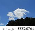 梅雨明けの青い空と白い雲 55526701