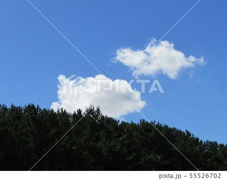 梅雨明けの青い空と白い雲 55526702