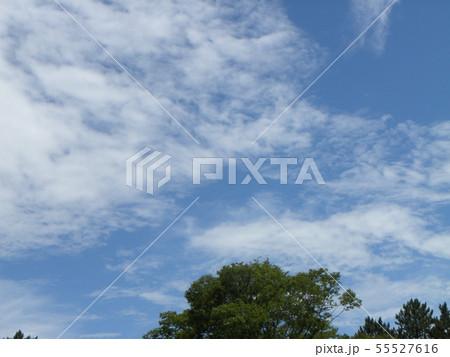 梅雨明けの青空と白い雲 55527616