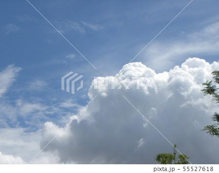 梅雨明けの青空と白い雲 55527618