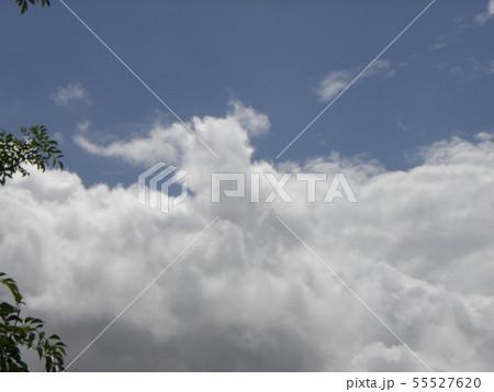 梅雨明けの青空と白い雲 55527620