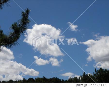 梅雨明けの青空と白い雲 55528142