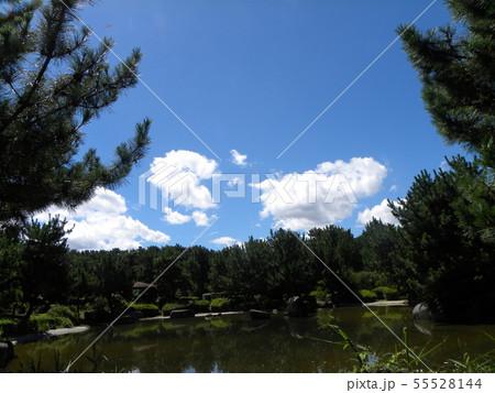梅雨明けの青空と白い雲 55528144