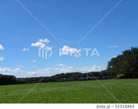 梅雨明けの青空と白い雲 55528863