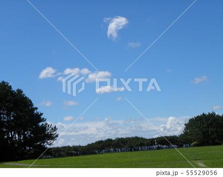梅雨明けの青空と白い雲 55529056