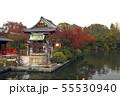 11月 紅葉の神泉苑 55530940