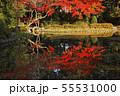 11月 紅葉の平安神宮 55531000