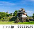 熊本城 55533985