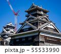 熊本城天守閣と宇土櫓 55533990