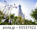 ドームガーデンの花と東京スカイツリー  55537422