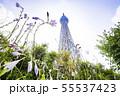 ドームガーデンの花と東京スカイツリー  55537423