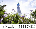 ドームガーデンの花と東京スカイツリー   55537488