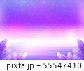満天の星空とサンセットの海 55547410