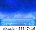 満天の星空と夜の海 55547416